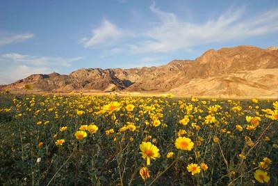 Death Valley 040