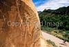 Mountain biker at petroglyph panel in Dinosaur National Monument 3