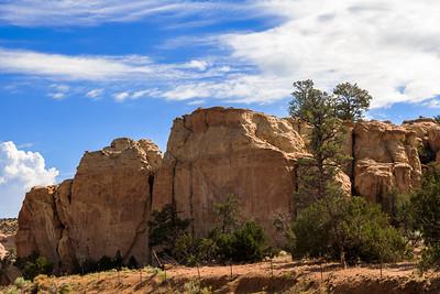 Rocks, Pine Trees and Fences