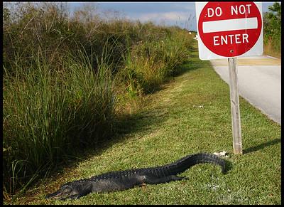 """""""Do not enter..."""""""