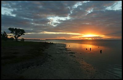 Sunrise, Flamingo