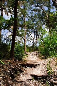 Timucuan Ecological and Historic Preserve, Florida in July 2010.