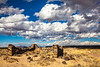New Mexico - Fort Craig Nat'l Historic Site, south of Socorro - D6-C3-0219 - 72 ppi
