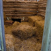 This dwelling has hay in it.