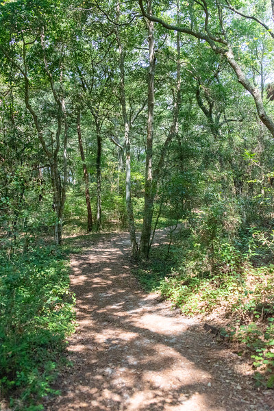 The Thomas Hariot Trail