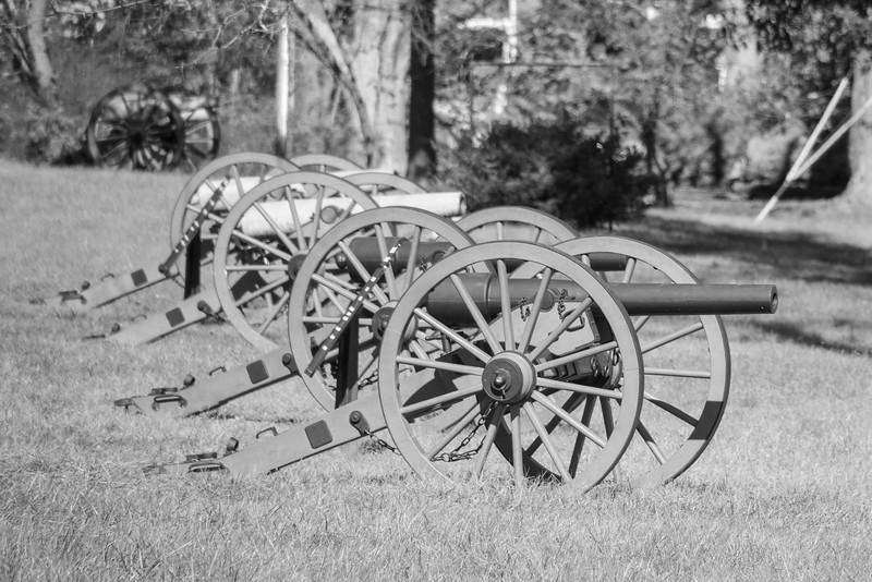 Cannon on Confederate Avenue