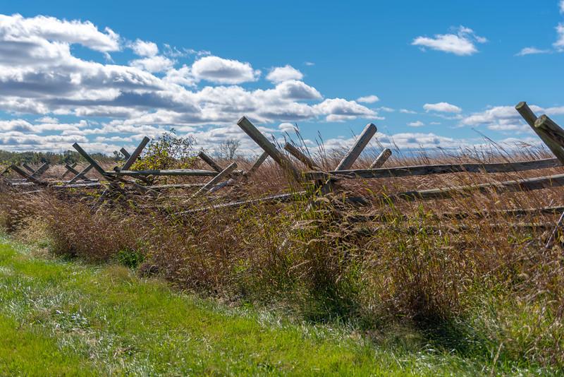 Fences & Fields