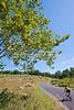 Cyclist at Gettysburg National Military Park, Pennsylvania-M3-0729 - 72 ppi