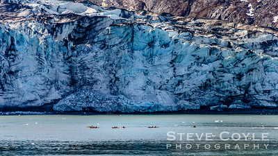 We saw these kayakers at the Lamplugh Glacier in Glacier Bay National Park. If I am ever able to go to Glacier Bay National Park again, kayaking the glaciers is definitely something I'd like to do. They refer to this glacier as Lampblue because of it's striking blue color. Seeing the kayaks in the shot really gives you a great idea of how immense these sheets of ice are. Sadly they are very small compared to what they were 150 years ago at the end of the 'Little Ice Age'.