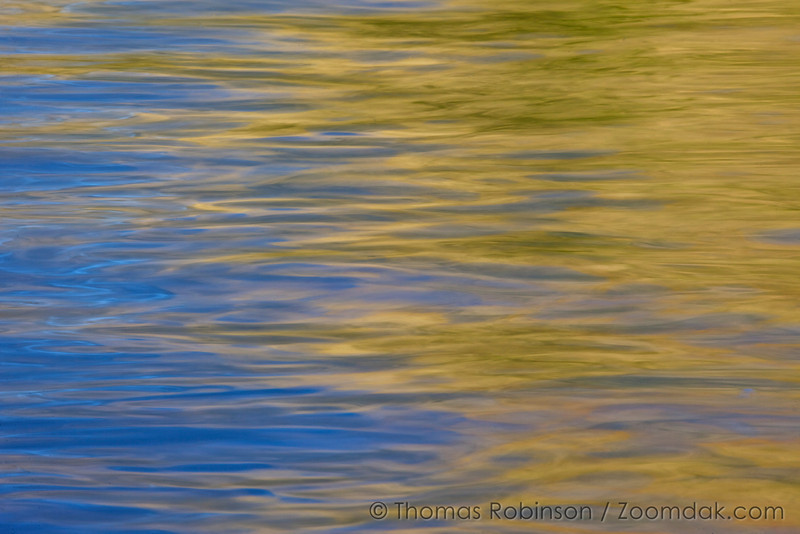 Blue and gold swirl together in this reflection of light and clouds at sunrise in Glacier National Park.