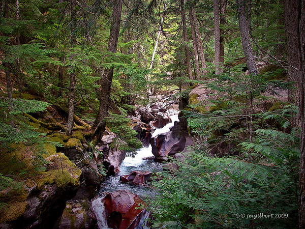 One of many streams in the park.  Sony DSC-H2, my first camera. SV: 1/40, AV f/2.8 ISO 125 vocal length 6mm