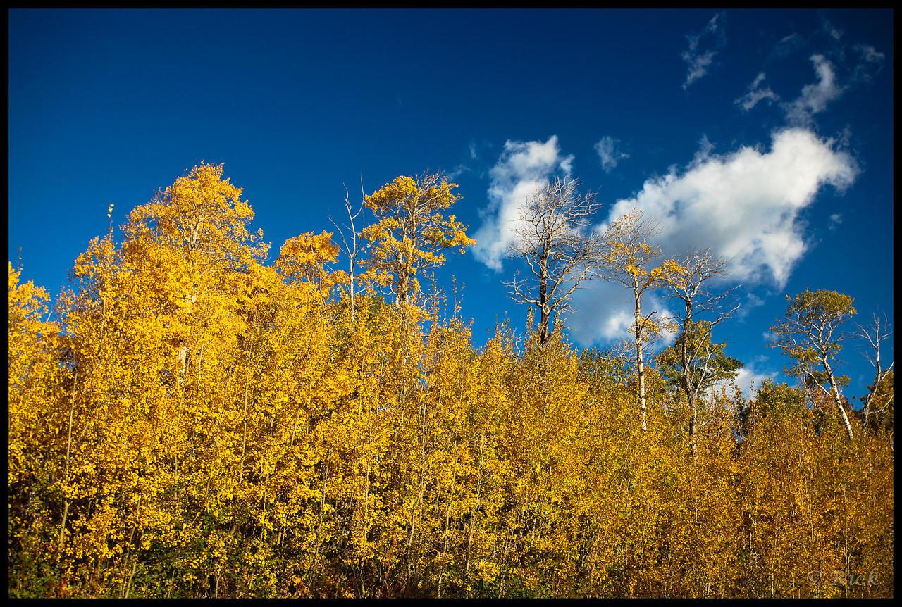 Glacier National Park, late autumn