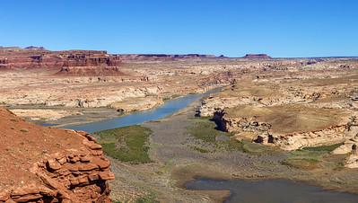 Colorado River and the Powell Swamp