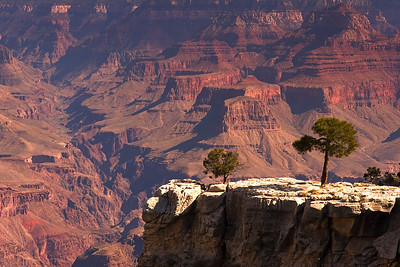 Bright Angel, Grand Canyon