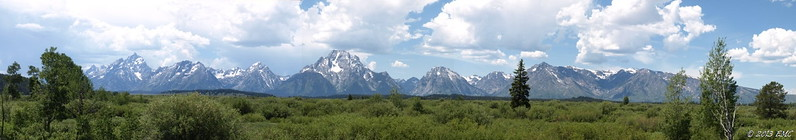Teton Range & Willow Flats