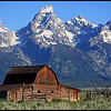 John Moulton Barn and the Tetons, Early Morning, Grand Teton National Park<br /> <br /> Moulton Barn is perhaps one of Jackson Hole's most photographed scenes: A weathered barn in a green meadow rises up against the Tetons. The barn is part of the Mormon settlement now called Mormon Row, still stands intact in all of its rustic glory. The barn has become an icon of the Old West, weathered almost a century and still standing today.