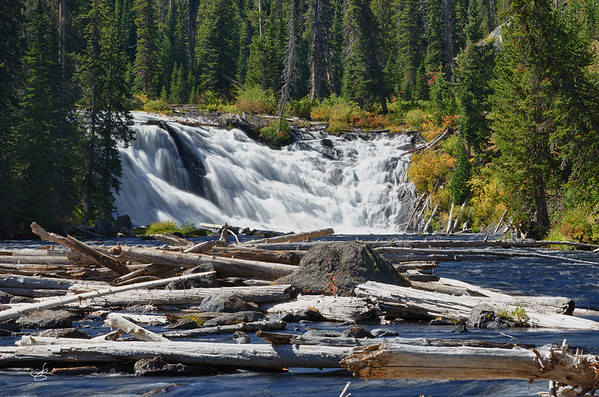 Added bonus for me.  On our way back to our cabin from the southern part of Yellowstone we came across Lewis Falls.  Due to time constraints we were unable to get to this last year.  Needless to say this was a treat although taken in harsh light.