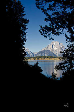 This view of Middle Teton was taken while hiking a trail along the lake by the dam.