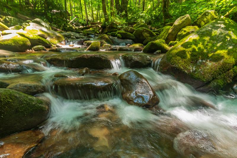 Le Conte Creek