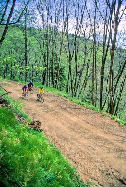 B nc heintooga 5 - ORps - 72 dpi - Heintooga Trail in Great Smoky Mountains National Park in North Carolina