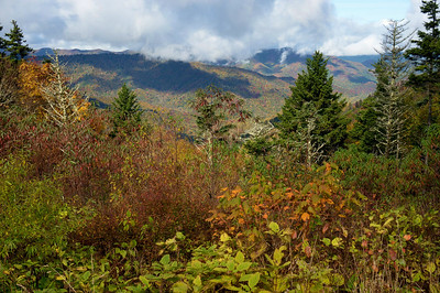 SmokyMountains050