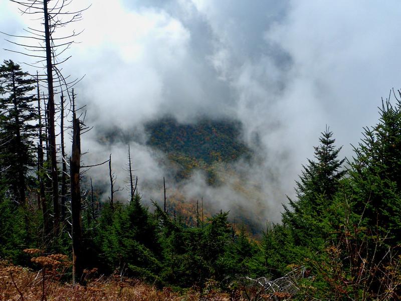 SmokyMountains064