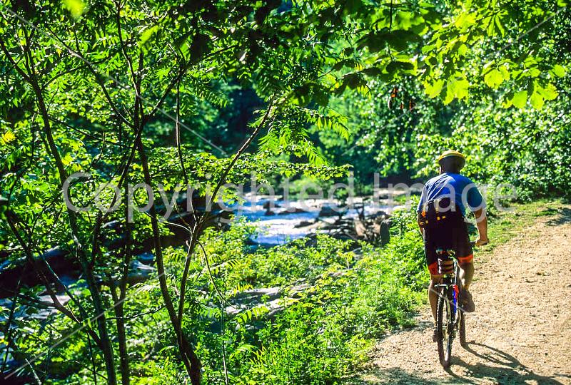 Great Falls Park, VA, near DC; Difficult Run Trail - 72 dpi -2