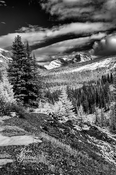 Parker Ridge 10/03/2013:  Stopped at Parker Ridge to take a break and shoot some infrareds.