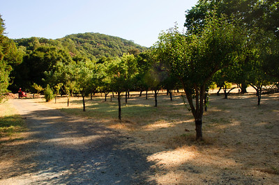 John Muir National Historic Site in Martinez, California in August 2010.