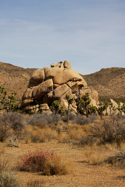 Joshua Tree National Monument, California