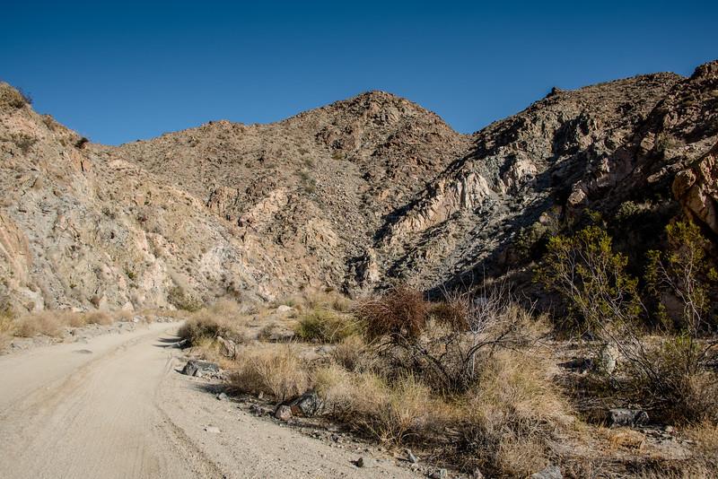 Geology Tour Road/Berdoo Canyon Road in Joshua Tree National Park, April 2018.