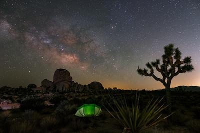 Desert Slumber