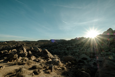 Desert Struck