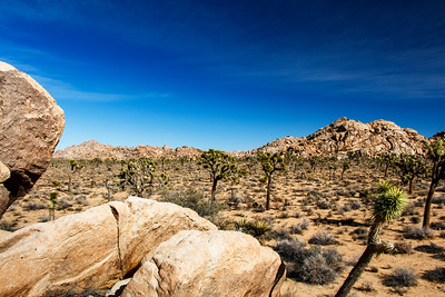 Land Of Boulders, Joshua Trees and Yucca