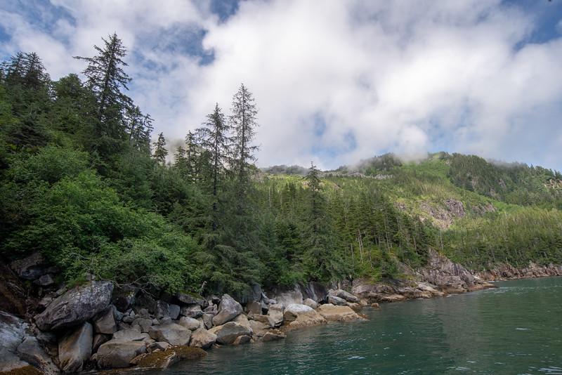 Verdant Cove