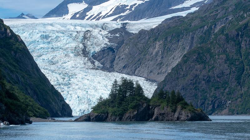 Ice Field to Glacier Toe