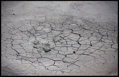 Cracks on the ground near Bumpass Hell