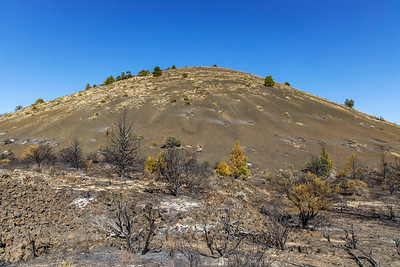 Cinder Cone & Burned Trees