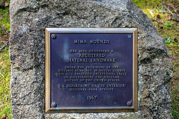 Mima Mounds, WA