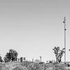 Radio Free Mojave