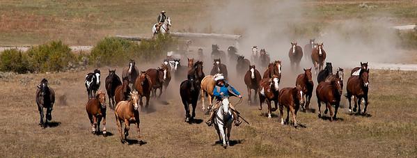 Elkhorn Ranch Montana