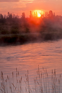 Sunrise on the Madison River near Yellowstone National Park