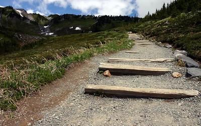 On the Alta Vista Trail