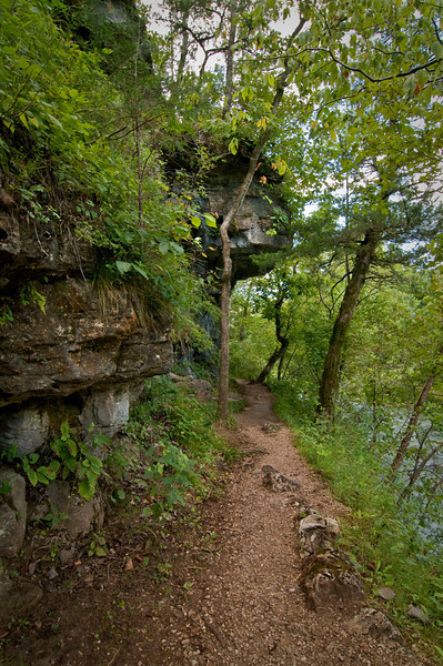Alley Spring, Missouri Hiking Trail.  Part of the Ozark Scenic National Riverways.