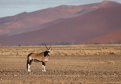 Namibie 2015