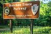 Natchez Trace Parkway sign - 1 - 72 ppi