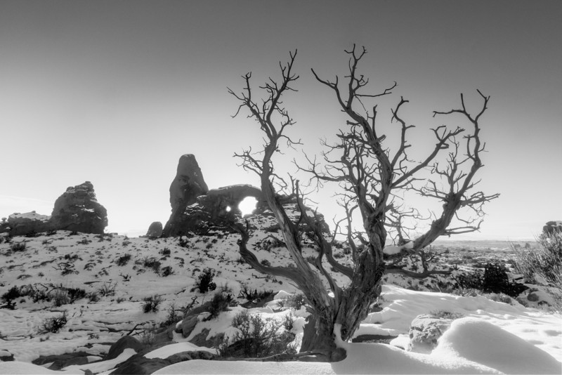 Turret Arch Black & White