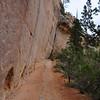 A small chunk of flat trail
