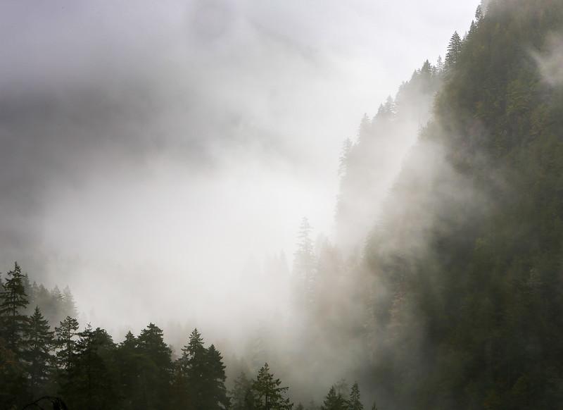 Giants in the Fog