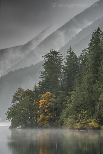 Lake Crescent Dream